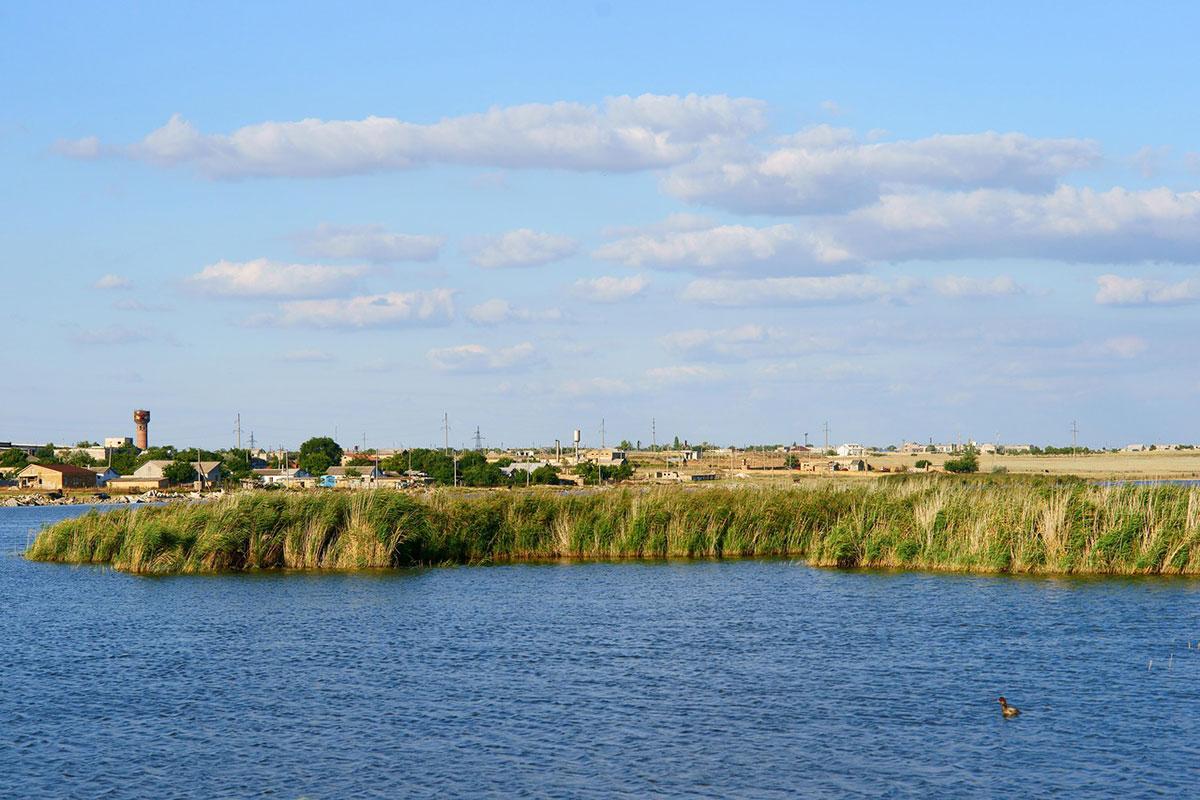 Озеро Сасык-Сиваш иллюстрация 1