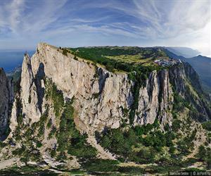 Пещеры в лесу Аокигахара.. Обсуждение на LiveInternet - Российский ... | 250x300