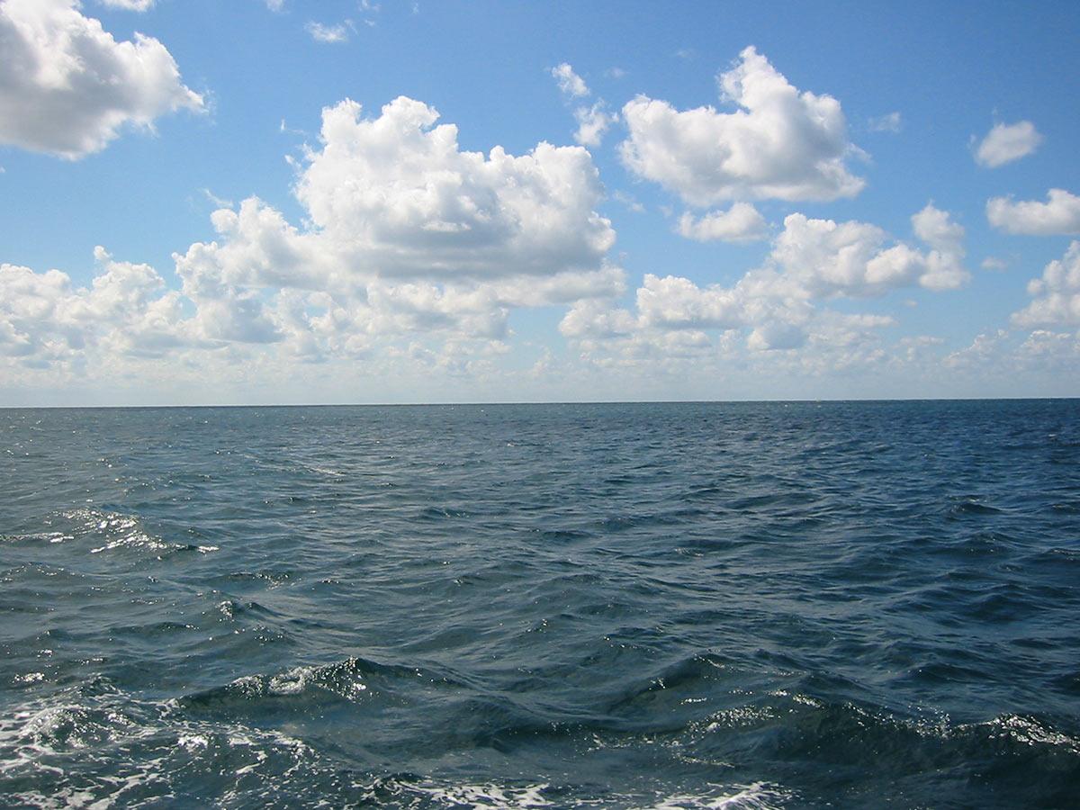 Чёрное море иллюстрация